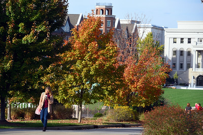 campus shots