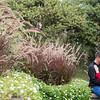 2016Oct11-Powell-Gardens-Engagement-JM-0019