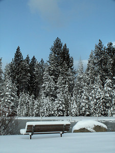 Mid-March at Lake Tahoe