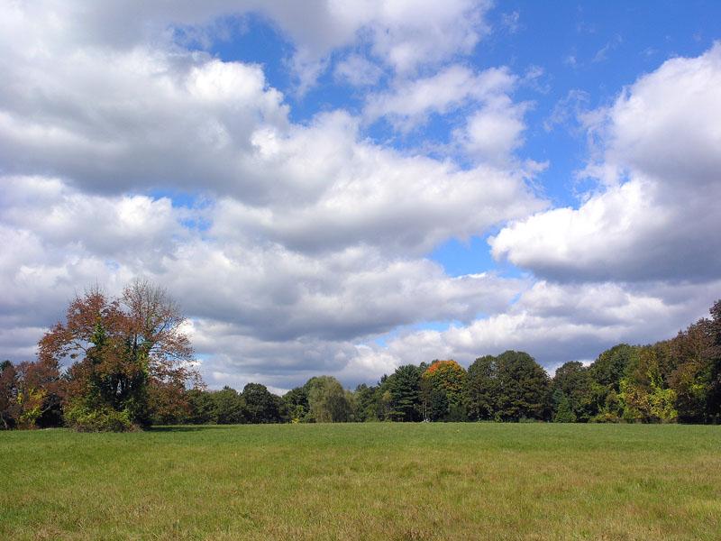 No. 26: the Grange field.