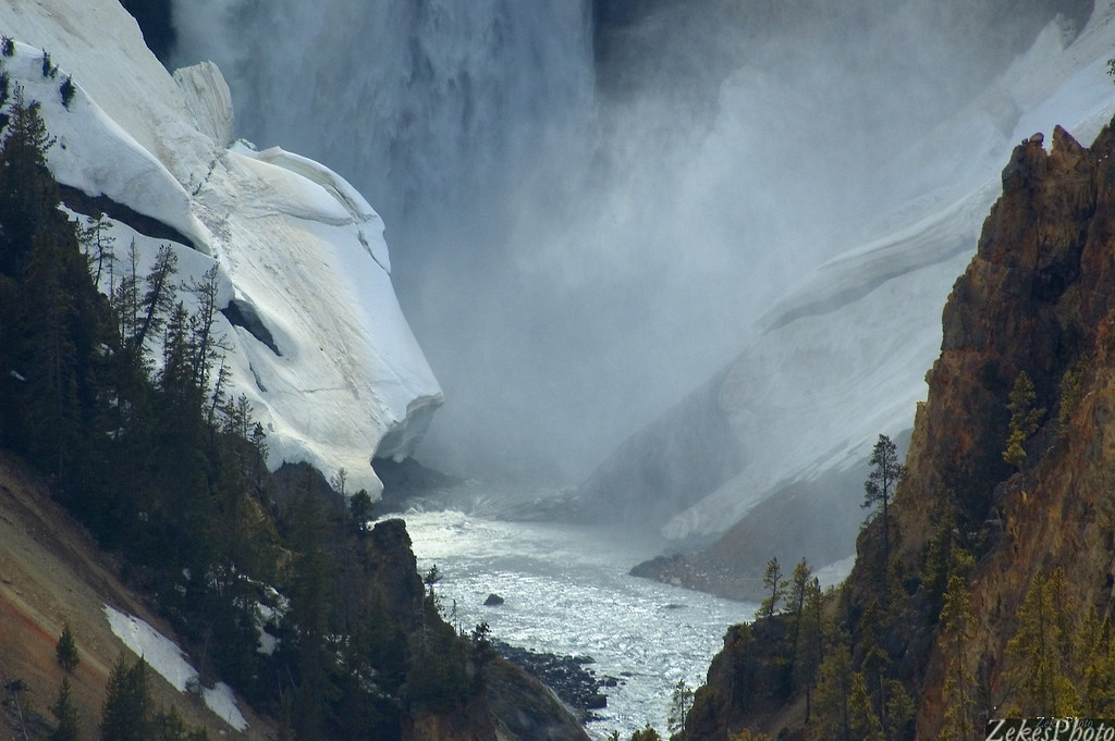 Yellowstone's Artists View