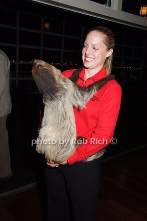 """""""Ellie""""-Sloth, Becky"""