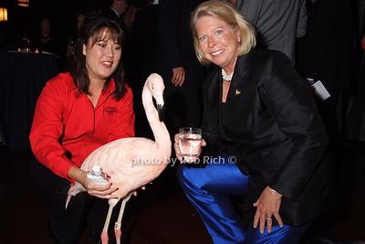 """""""Pinky""""-Flamingo,  Christine Charlick, Judith Ayres"""