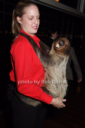 """Becky, """"Ellie""""- Sloth"""
