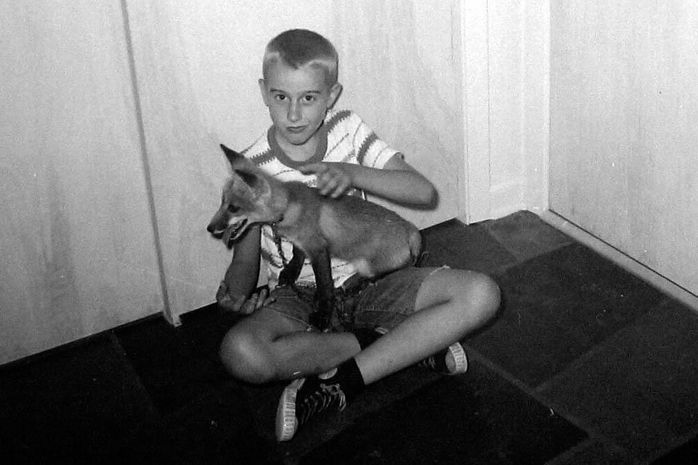 fox in hall 2