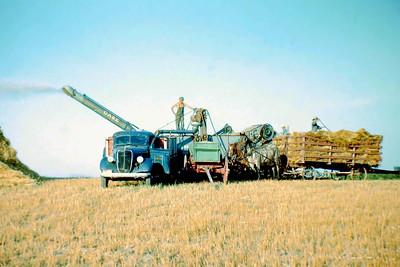Harvest, Boone County Nebraska ca 1945 -4
