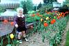 jpb with tulips