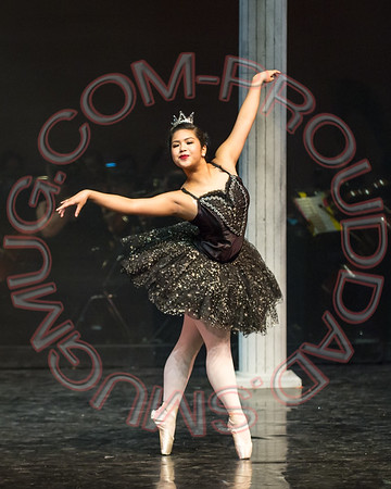 2015 BBT Swan Lake Saturday