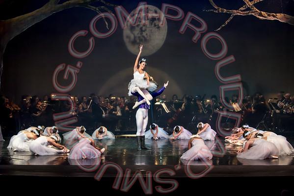 2015 BBT Swan Lake Ballet