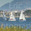 Sail Boat Racing Benincia Friday Night-43