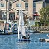 Sail Boat Racing Benincia Friday Night-4