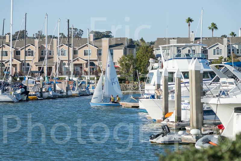 Sail Boat Racing Benincia Friday Night-2