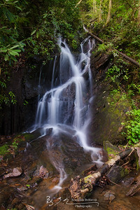 GSMNP Waterfall I