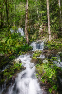 GSMNP Waterfall XI