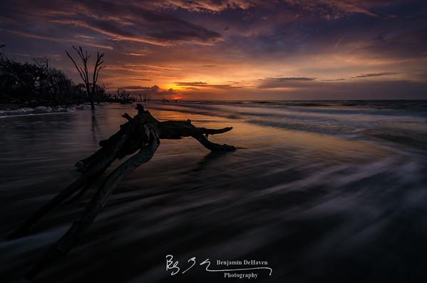 Botany Bay III
