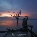 Botany Bay 6