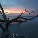 Botany Bay I