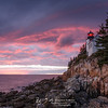 Bass Harbor Red