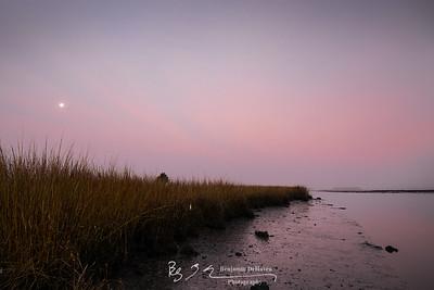 Pink Marsh Mud