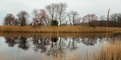 Hidden Reflections