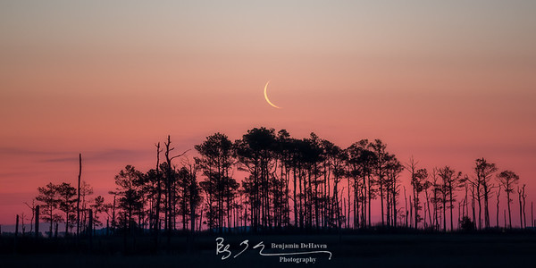 Crescent Moon Rising