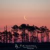 Crescent Moon Rising