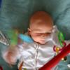 Taking a whack at hanging toys