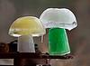 HOLLY PELCZYNSKI - BENNINGTON BANNER Mushrooms melt as the temperatures start to warm up.