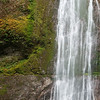 Marymere Falls, Olympic National Park