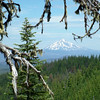 Mt. Jefferson, Central Oregon Cascades - July 2004