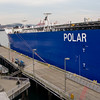 <i>Polar Discovery </i> at Bell Street Pier on the Seattle Waterfront