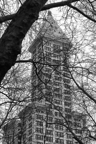 "Smith Tower from Pioneer Square<br> <p style=""text-align: center; color: #777777"">- Made it to second round of voting in Seattle Shootout -</p>"