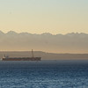 Grain ship anchored in Elliot Bay