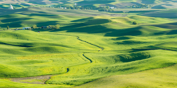 Rolling hills of the Palouse at Sunset