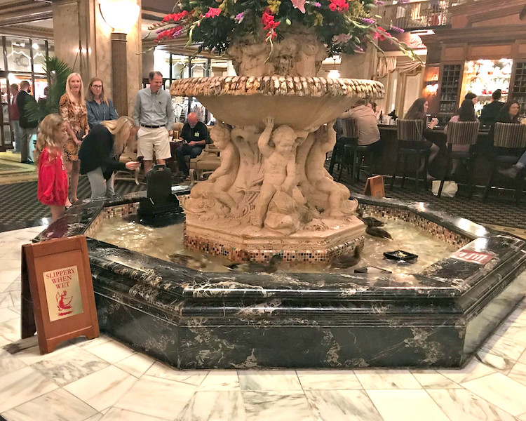 2017-11-05 Benson Miss Cruise Memphis - Peabody Hotel Duck March 2 Elevator - Peabody Hotel Duck March 6 Fountain