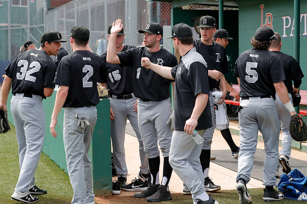 NCAA Baseball: Bentley take on Assumption