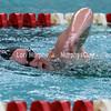 0024-bcswimmingvssn17