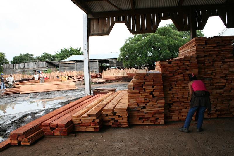 Aserradero de madera (sawmill) in Concepción