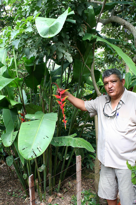 Patujú  Servicios Agrícolas de Reforestación del Medioambiente en Santa Cruz, Bolivia