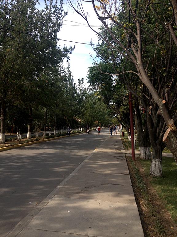 Univalle University