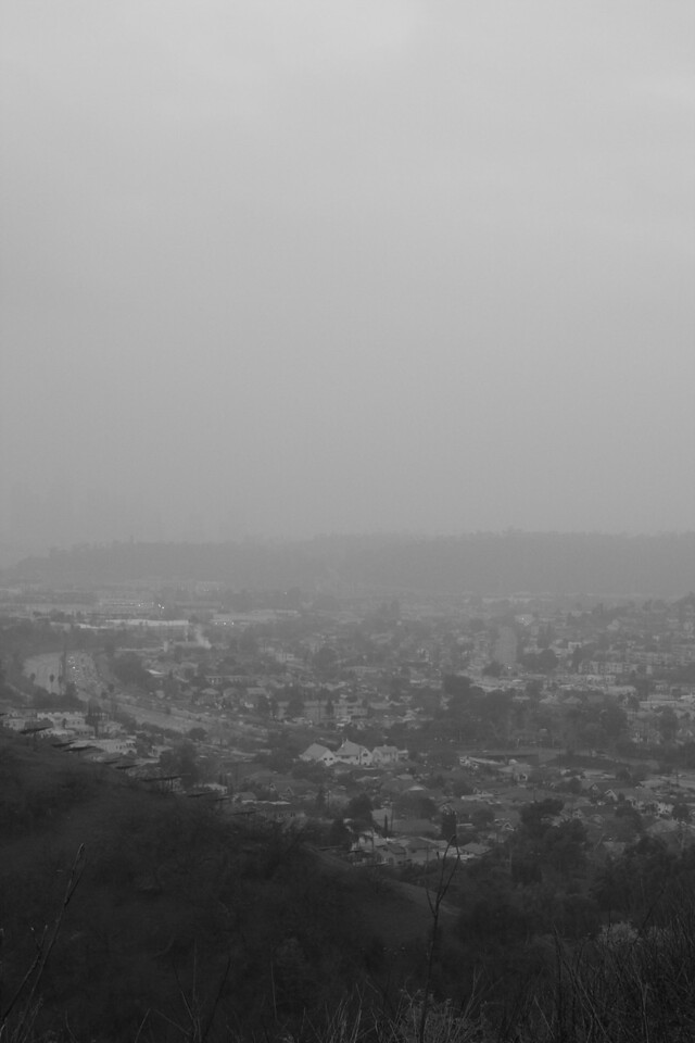 View of Los Angeles from Debs Park