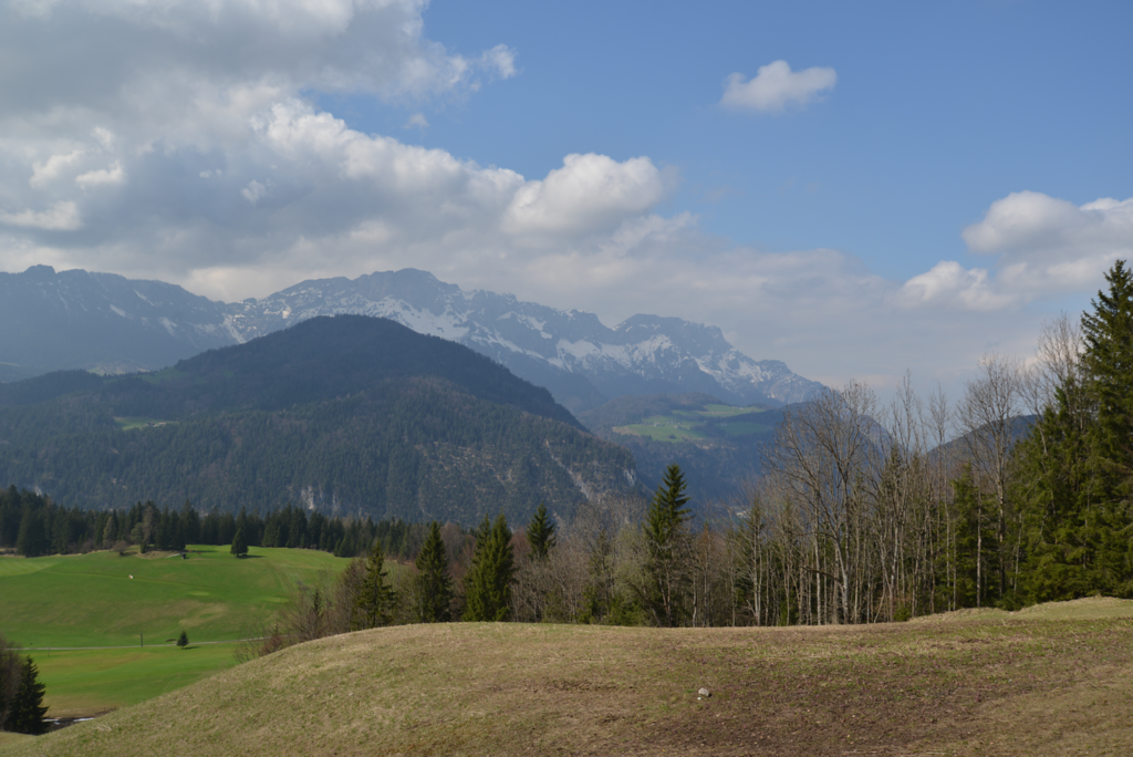 North from Area of Goering's House