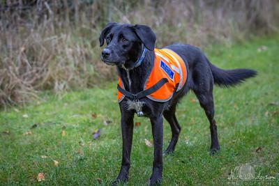 Berks Rescue-1329