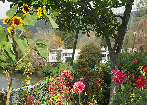 Shelburne Falls Bridge of Flowers