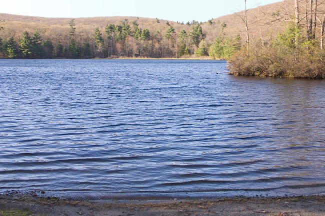 Benedict Pond in Beartown State Forest, Monterey
