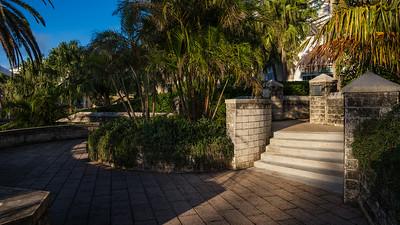 0790 Ace Bermuda Garden