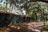 Park Wall & Trail-200213-038