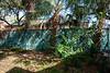 Park Wall & Trail-200213-002