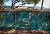 Park Wall & Trail-200213-007
