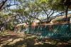 Park Wall & Trail-200213-004
